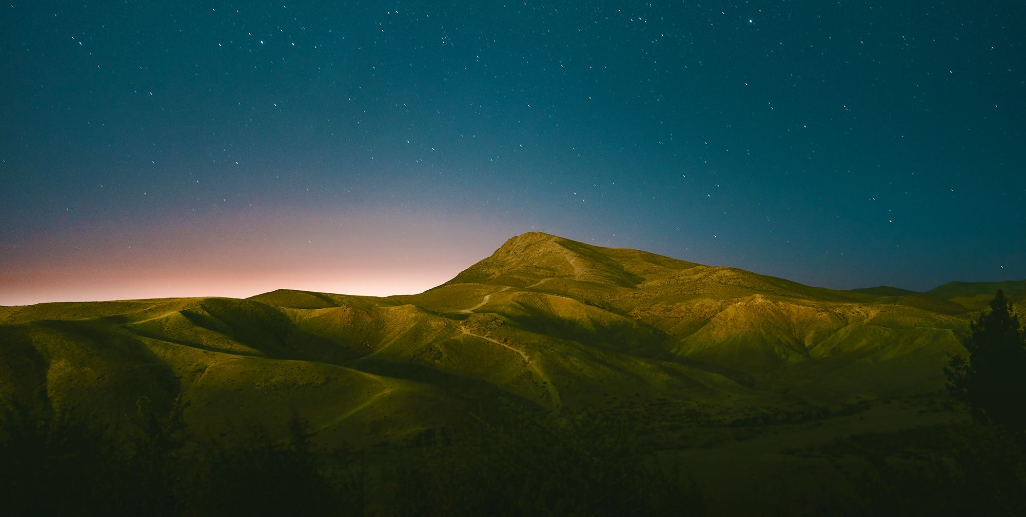 Wunder's 2018 Year-in-Review is Now Available!